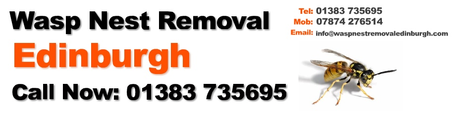 Wasp nest removal Edinburgh Logo